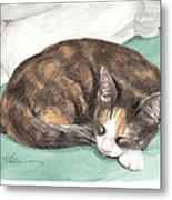 Calico Cat Sleeping Watercolor Portrait Metal Print