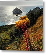California - Big Sur 006 Metal Print by Lance Vaughn