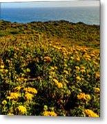 California - Big Sur 007 Metal Print by Lance Vaughn