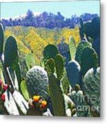California Big Sur Flowers Metal Print