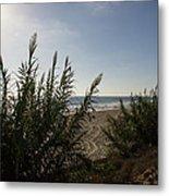 California Carlsbad Beach Hidden View Metal Print