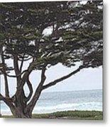 California Coast # 8 Metal Print