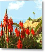 California Coastline With Red Hot Poker Plants Metal Print