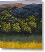 California Foothills Metal Print