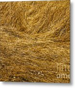 California Gold Metal Print