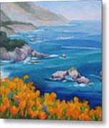 California Poppies Big Sur Metal Print