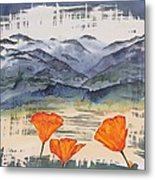 California Poppies Metal Print by Carolyn Doe
