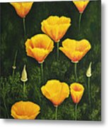 California Poppy Metal Print by Veikko Suikkanen