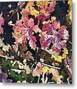 California Vineyard Series Fall Grape Leaves Metal Print by Artist and Photographer Laura Wrede