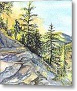 Californias Sierras Metal Print