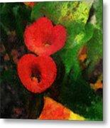 Calla Lilies Photo Art 03 Metal Print by Thomas Woolworth