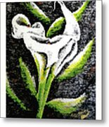 Calla Lily II Metal Print