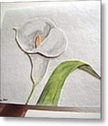 Callalilly Card - Image Two Metal Print