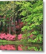 Callaway Gardens 1 Metal Print