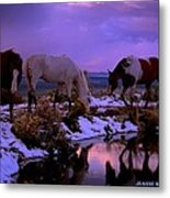Calm After The Storm  Metal Print by Jeanne  Bencich-Nations