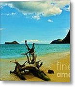 Calm And Quiet Morning  Metal Print