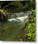 Calm Rapids Metal Print