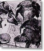 Calves, Damp, Newborn, 1978 Pen & Ink On Paper Metal Print