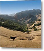 Cambria California Country Road Metal Print
