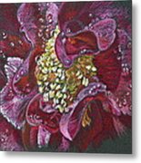 Camellia Rain Metal Print