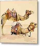 Camels From Petra Metal Print
