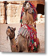 Camels In Petra Metal Print by Jane Rix