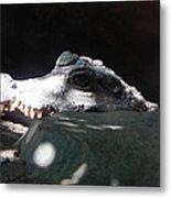 Camo-croc Metal Print