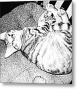 Can I Have My Nap Metal Print