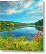 Canada, Ontario, Algonquin Provincial Metal Print