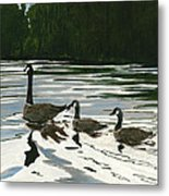 Canadas On Wilson Lake Nc Metal Print