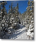 Canadian Winter Wonderland.. Metal Print