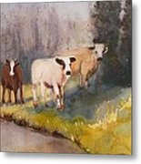 Canal Cows Metal Print