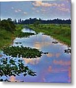 Canal In The Glades Metal Print