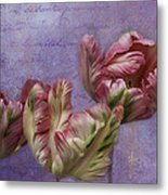 Cancan Parrot Tulips Metal Print