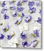 Candied Violets Metal Print