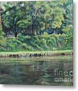 Cane River Metal Print by Ellen Howell