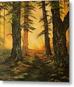 Cannock Chase Forest In Sunlight Metal Print