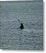 Canoeing In The Florida Riviera Metal Print