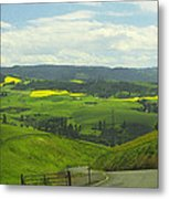 Canola Country Road Metal Print
