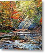 Canopy Of Color Iv Metal Print
