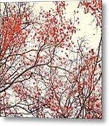 canopy trees II Metal Print by Priska Wettstein