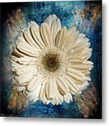 Canvas Still  Metal Print