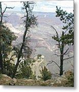 Canyon And Trees Metal Print