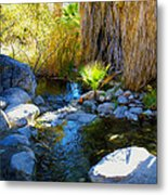 Canyon Creek Baby Palm Metal Print