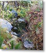 Canyon Creek Metal Print
