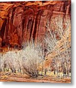 Canyon De Chelly - Spring II Metal Print