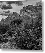 Canyon Del Oro No.48 Metal Print