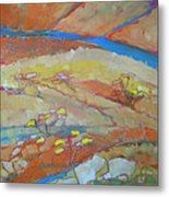 Canyon Dreams 23 Metal Print