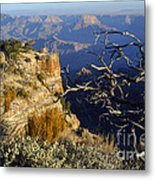 Canyon Foliage Metal Print