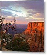 Canyon Rim Tree Metal Print